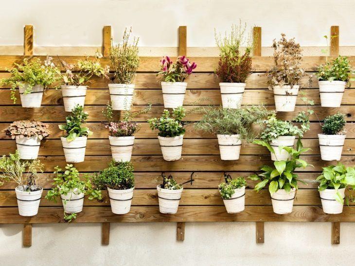 Horta vertical em casa como aplicar