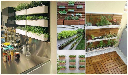 Horta vertical em casa dicas